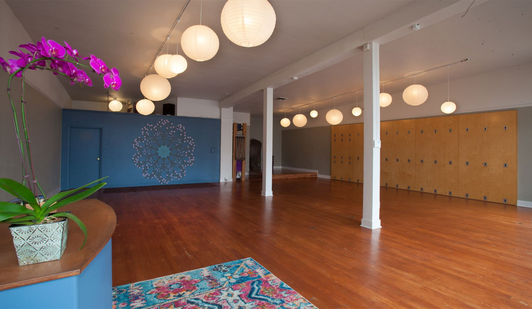 Yoga On Beacon Yoga Studio Seattle Wa Yoga Classes For All Levels And Abilities